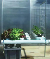 Browse Hydroponic Systems